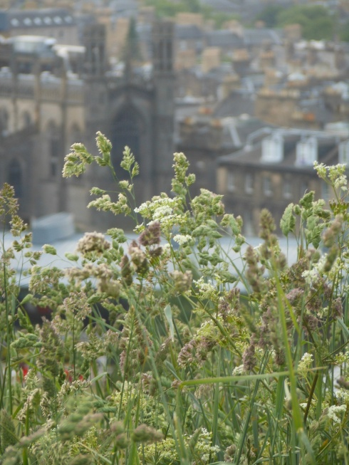 At the top of Calton Hill with Edinburgh in the background.